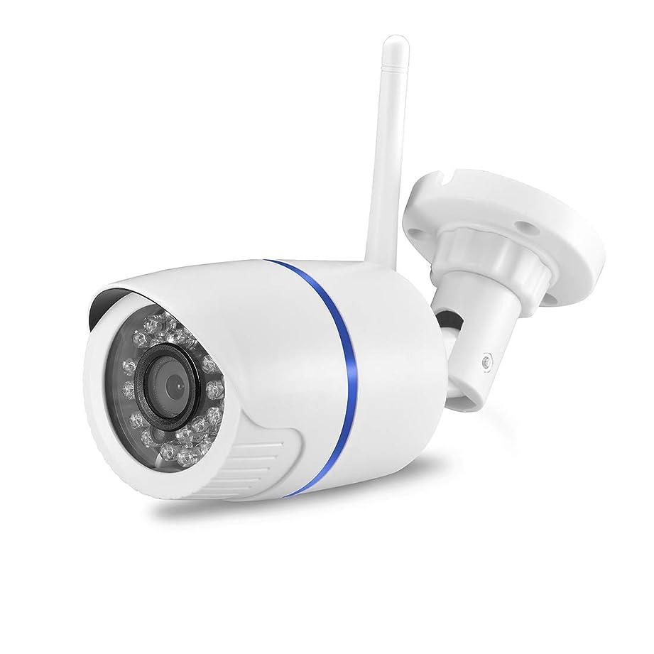 アダルト翻訳ガチョウノウ建材貿易 WiFiセキュリティカメラスマートHD屋外防水ウェブカメラナイトビジョン、動きの検出 (Resolution : 1080P)