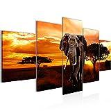 Bilder Afrika Elefant Wandbild 200 x 100 cm Vlies -
