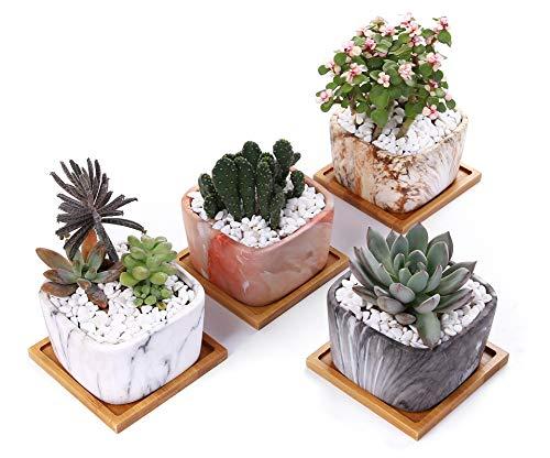 Vasi per Piante Grasse in Ceramica, Richaa Vaso da Fiori in Ceramica Marmorizzata Stile Moderno Mini Vasi per Piante di Cactus con Foro di Drenaggio e Vassoio per Arredamento da Ufficio