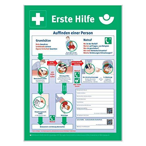 Holthaus Medical Tafel Anleitung zur Ersten Hilfe Unfall Schild Betriebe, Kunststoff, 56x40cm