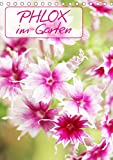 Phlox im Garten (Tischkalender 2021 DIN A5 hoch)