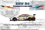 プラッツ/NuNu 1/24 レーシングシリーズ BMW M6 GT3 2018 マカオGP ウィナー プラモデル PN24008