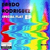 Special Flat (Tech-Basic Remix)