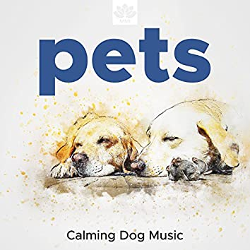 Pets - Calming Dog Music, Soothing Sounds, Nature Sounds