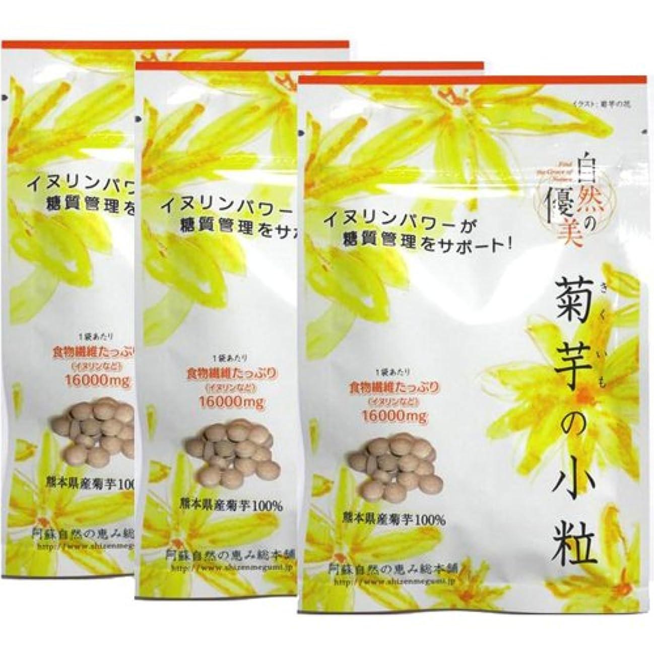 昆虫パドルラバ阿蘇自然の恵み総本舗 菊芋の小粒 100錠×3袋