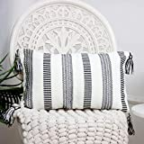U/D Modern Decorative Lumbar Throw Pillow Cover 12x20,Farmhouse Cotton Woven Pillowcase with Tassels, Super Soft Square Pillow Covers Cushion Case for Sofa Couch Bedroom Car Living Room
