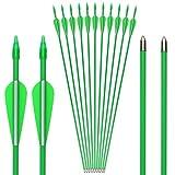 GPP 12 PK 28 Fiberglass Archery Target Arrows - Practice Arrow or Youth Arrow for Recurve Bow, Green