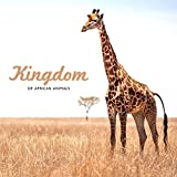 Kingdom of African Animals - Collection of Nature Sounds Straight from the Old Continent