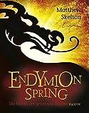 Matthew Skelton: Endymion Spring. Die Macht des geheimen Buches