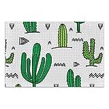 Linomo Rompecabezas de 1000 piezas para adultos y niños, diseño de cactus tropical, rompecabezas educativos para decoración del hogar