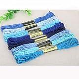 Bordado de Hilo 8pcs Multicolor Embroidery Thread similares Hilo de algodón de Punto de Cruz Bordado madejas Herramientas Floss DIY Kit de Costura QPLNTCQ (Color : Azul, Size : 1)