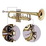 Immagine 1 muslady tromba bb ottone standard