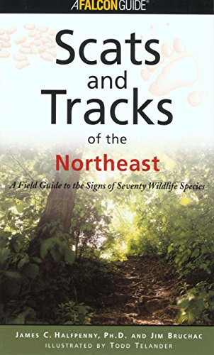 Scats and Tracks of the Northeast (Scats and Tracks Series)