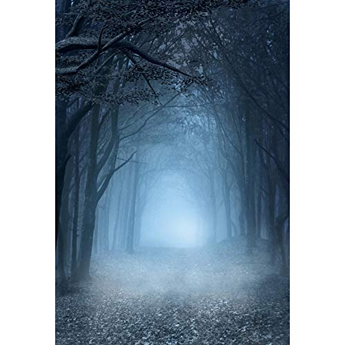 DaShan 5x7ft Polyester Creepy Enchanted Forest Scary Halloween Backdrop for Photography Dark Misty Woods Gloomy Mystery Vampire Photography Background Witch Wizard Sorcerer Ghost YouTube PhotoProp
