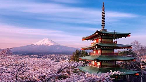 MMMDAN123 Pintar por Números para El Nivel De Principiante Junior Senior, Pintar por Números con Pinceles Y Lienzo Monte Fuji, Japón Decoración del Hogar Regalo De San Valentín 40x50cm