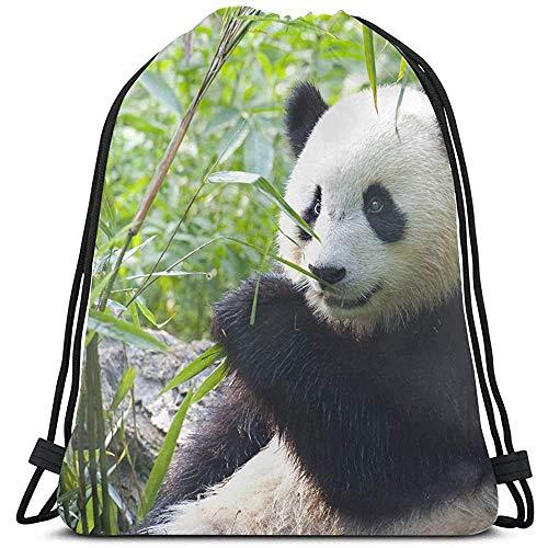 MOTALIN Mochila con Cordón,Hungry Giant Panda Bear Eating Bamboo Pull String Backpack S para Niñas Niña Cinch Pack para Viajes,Al Aire Libre,Gimnasio