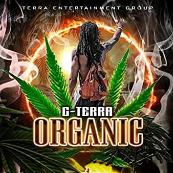 Organic (Radio Edit)
