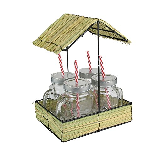 Pick and Drink KA2698 Set de 4 Mason Jar et Support Paillote, Polypropylène, Transparent, 23 x 17,5 x 30,5 cm