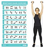 Vive Resistance Band Workout Poster - Laminated Bodyweight Hitt Exercise Chart for Abs, Glute, Back,...