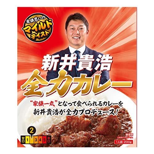 新井貴浩 全力カレー