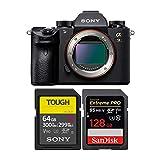 Sony Alpha a9 Mirrorless Digital Camera ILCE9/B Bundle with Sony 64GB UHS-II SD Card, R300/W299 + 128GB Extreme PR
