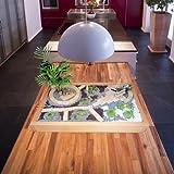GREEN24 Miniaturgarten - Zimmergarten, Kleiner mobiler Garten - der Garten für die Wohnung - Grundversion Birke hell gewachst