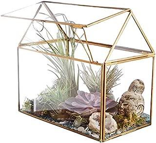 Sdoveb 19CM Height Closed Irregular Glass Terrarium with Door Succulent Planter Geometric Flower Plant Pot Tabletop Small Bonsai Reptile Container Desktop Display Box (Gold)
