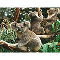 Azfvveu動物KoalaPaperパズル300ピース大人子供おもちゃ家の装飾コレクションおもちゃのギフトを組み立てる