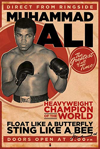 Muhammad Ali Poster, Affiche (61cm x 91,5cm)