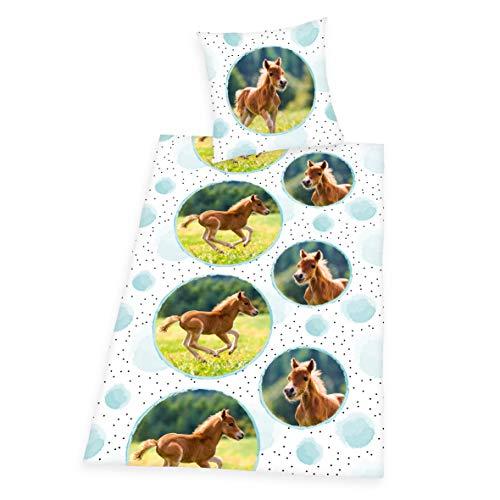 Herding Young Collection Bettwäsche-Set, Pferde-Motiv, Bettbezug 135 x 200cm, Kopfkissenbezug 80 x 80cm, Baumwolle/Renforcé