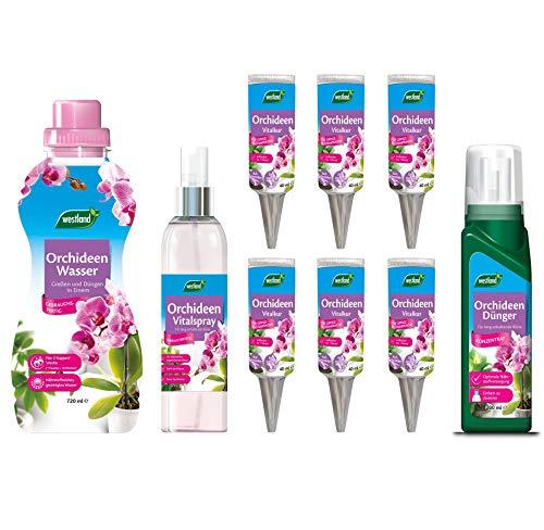 OLEANDERHOF® Westland® Orchideen PflegeSet 4 - inklusive gratis Oleanderhof Flyer