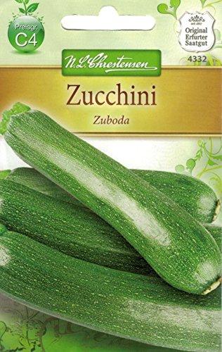 Chrestensen Zuccini 'Zuboda'