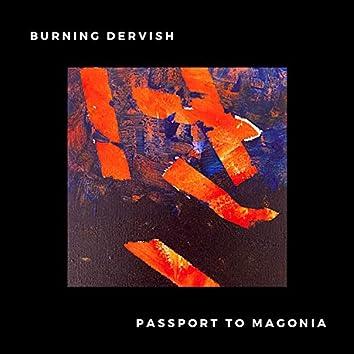 Passport to Magonia