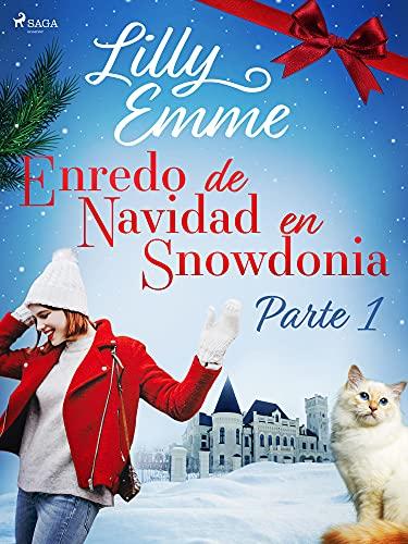 Enredo de Navidad en Snowdonia de Lilly Emme