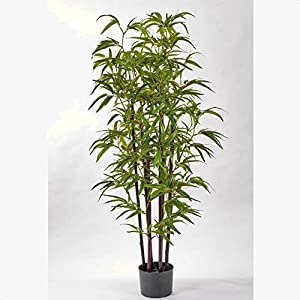 Bamboo Tree in Pot, Base Type: Pot, Plant Type: Artificial
