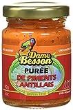 Dame Besson Purée de Piments 90 g