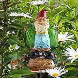 DENGZI Gartenzwerge Lustig FüR AußEn,Gartenzwerg Stinkefinger Nackt Wetterfest Groß Sexy Funny Garden GNOME Statue Garden Decorati Resin Dwarf Statue Innen- Oder AußEndekorationen
