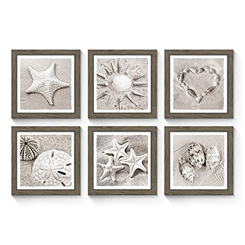 Framed Starfish Gallery Wall Art: Seashell Sand Dollar Collection Conch Pictures Prints Set of 6 Wall Decor for Home (Multi-Style)
