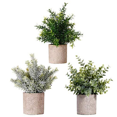 quancheng 3 unidades de plantas artificiales, plantas artificiales, plantas artificiales, eucalipto y romero, pequeñas con maceta, para casa, escritorio, cocina, baño, jardín, decoración