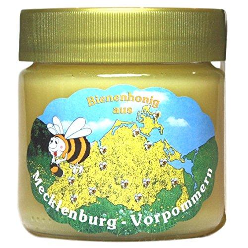Rapshonig 1 x 250g | Deutsche Herkunft - Mecklenburg | reiner Honig - direkt vom Imker keine Massenware