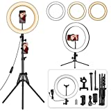 14 inch Ring Light with Stand and Phone Holder, Desk Ringlight, 69' Heighten Tripod LED Circle Light for iPhone Tiktok YouTube Video Recording, Live Streaming, Selfie Photo, Makeup, Zoom Meetings