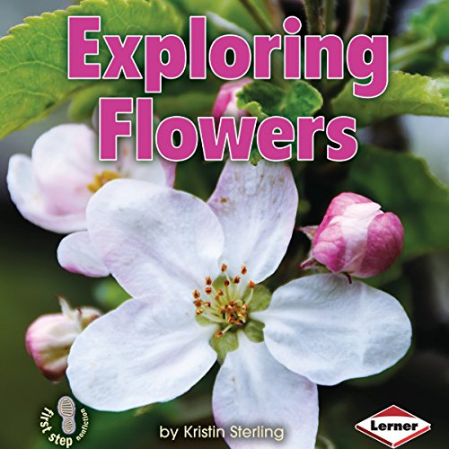 Exploring Flowers copertina