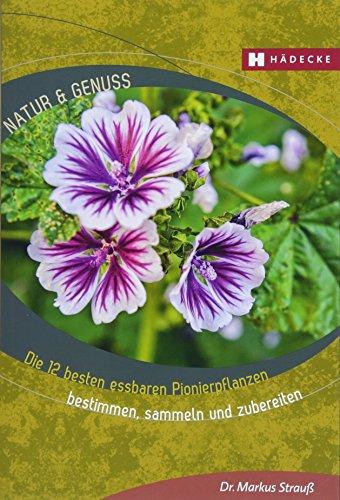 Die 12 besten essbaren Pionierpflanzen: bestimmen, sammeln und zubereiten (Natur & Genuss)