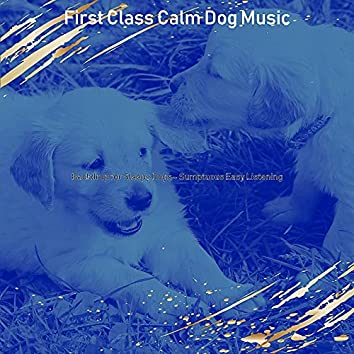 Backdrop for Sleepy Dogs - Sumptuous Easy Listening