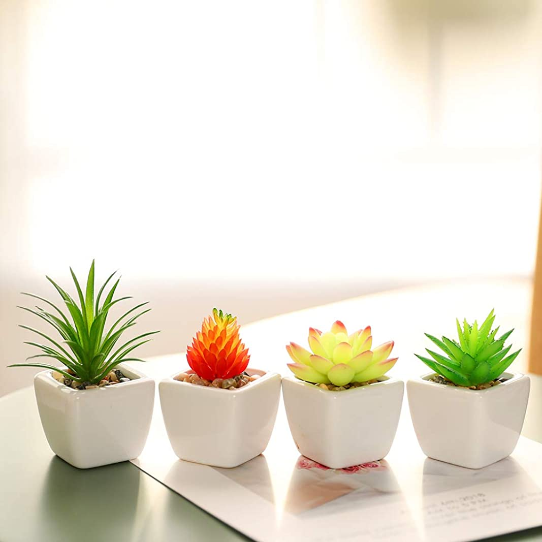 高める植木ペルーいい生活 4点セット 光触媒 人工多肉植物 ミニ 植物鉢植え 枯れない 白い正方形の植木鉢 観葉植物 室内 ホーム 庭 装饰 デコレーション (セラミックの植木鉢 B)