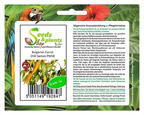 Stk - 5x Bulgarian Carrot- Samen Saatgut Küche Garten Chili samen Chili PW58 - Seeds Plants Shop Samenbank Pfullingen Patrik Ipsa