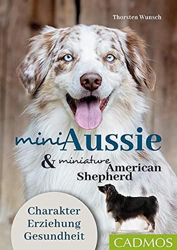 Mini Aussie und Miniature American Shepherd: Charakter – Erziehung - Gesundheit