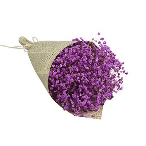 HUHU833 Natürliche getrocknete Blume Himmel Sterne floral Blumenstrauß Blume für Dekoration Wohnaccessoires & Deko (Violett)