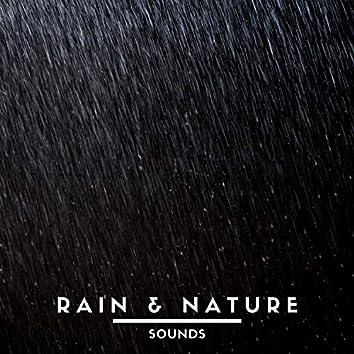 Rain & Nature Sounds