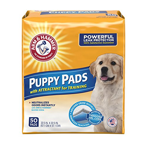 Arm and Hammer Puppy Pee Pads